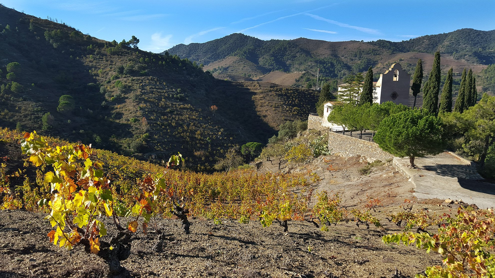 Priorat landscape vineyards wine