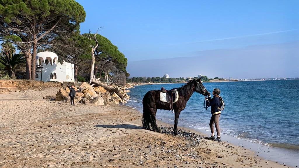 Horse riding from Casa Argentera to Costa Dorada