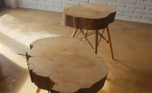 Tables made by centenary cedar tree from the masia